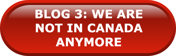 Blog 3: We're Not in Canada Anymore: The on the ground perspective article
