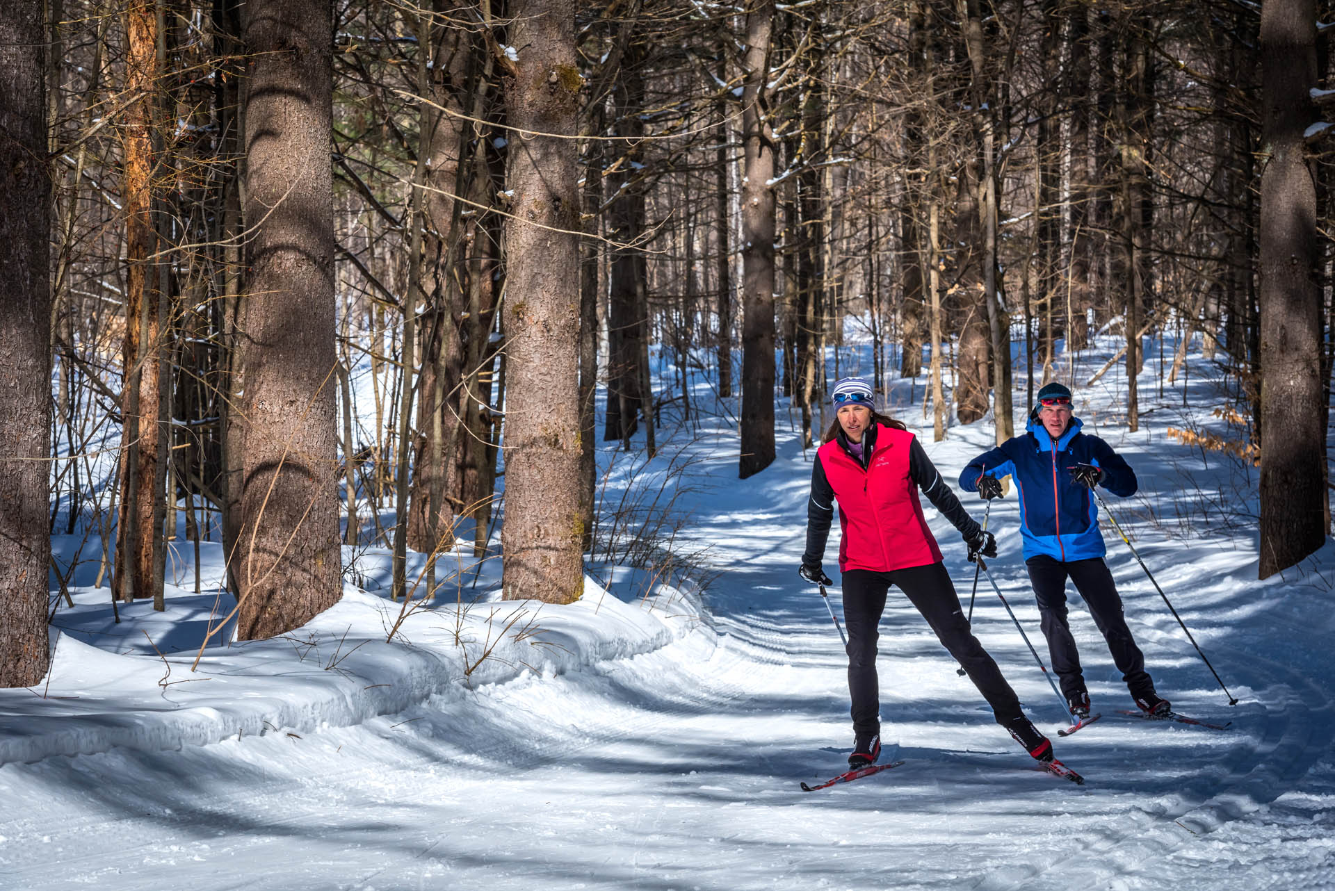 Couple cross-country skiing in the Gatineau Park